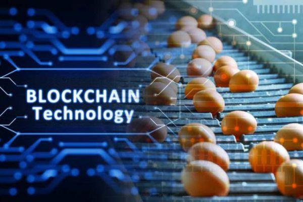 Blockchain will help save $ 31 billion in the food market